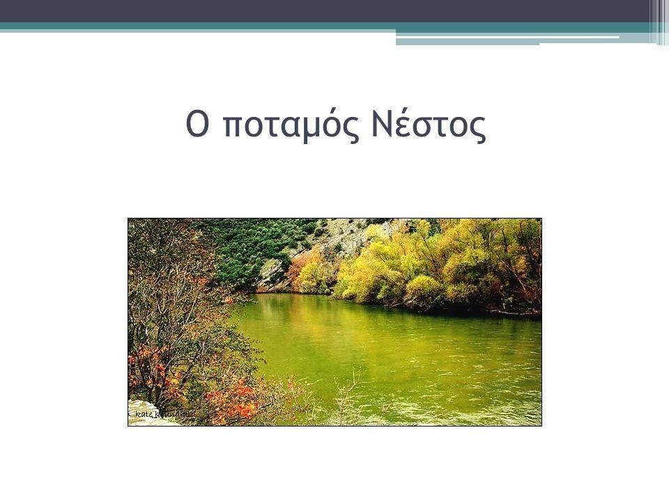 Ο ποταμός Νέστος