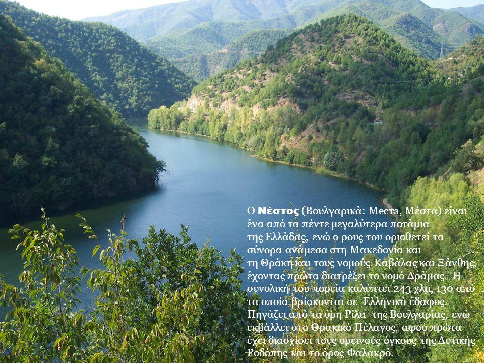 Ο Νέστος (Βουλγαρικά: Места, Μέστα) είναι ένα από τα πέντε μεγαλύτερα ποτάμια της Ελλάδας, ενώ ο ρους του οριοθετεί τα σύνορα ανάμεσα στη Μακεδονία και τη Θράκη και τους νομούς Καβάλας και Ξάνθης, έχοντας πρώτα διατρέξει το νομό Δράμας.