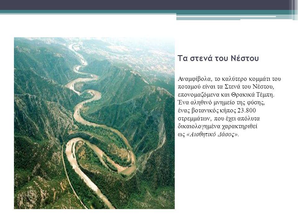 Τα στενά του Νέστου Αναμφίβολα, το καλύτερο κομμάτι του ποταμού είναι τα Στενά του Νέστου, επονομαζόμενα και Θρακικά Τέμπη.