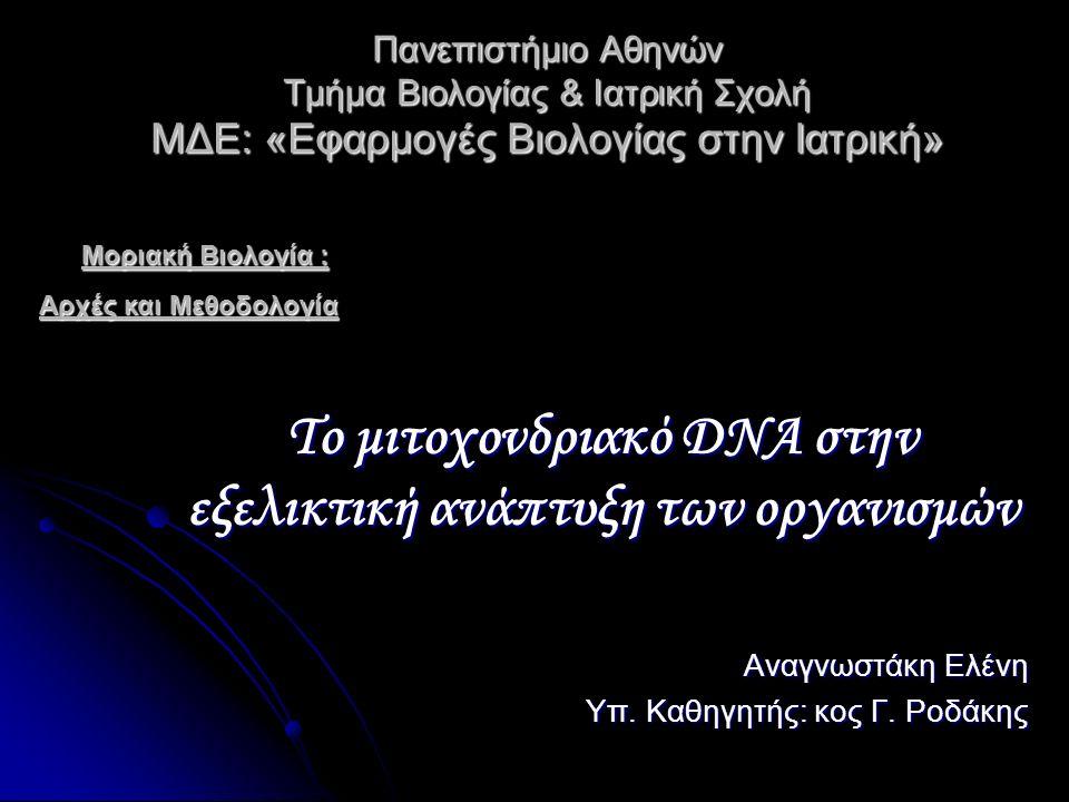 Πανεπιστήμιο Αθηνών Τμήμα Βιολογίας & Ιατρική Σχολή ΜΔΕ: «Εφαρμογές Βιολογίας στην Ιατρική» Πανεπιστήμιο Αθηνών Τμήμα Βιολογίας & Ιατρική Σχολή ΜΔΕ: «Εφαρμογές Βιολογίας στην Ιατρική» Το μιτοχονδριακό DNA στην εξελικτική ανάπτυξη των οργανισμών Αναγνωστάκη Ελένη Υπ.