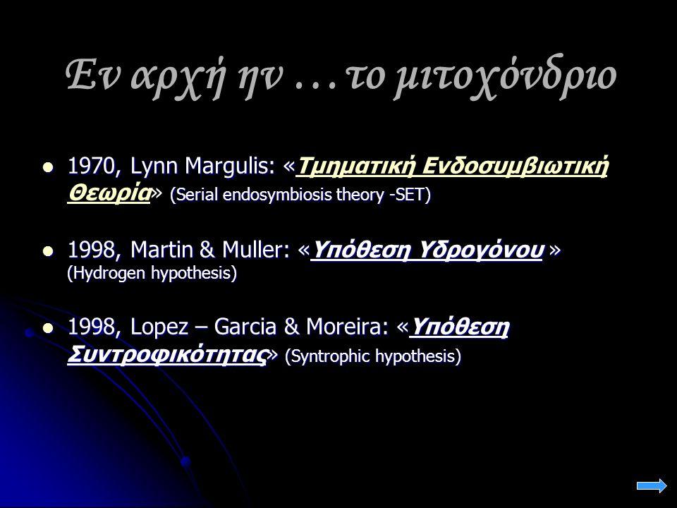 Εν αρχή ην …το μιτοχόνδριο 1970, Lynn Margulis: « (Serial endosymbiosis theory -SET) 1970, Lynn Margulis: «Τμηματική Ενδοσυμβιωτική Θεωρία» (Serial endosymbiosis theory -SET)Τμηματική Ενδοσυμβιωτική Θεωρία 1998, Martin & Muller: «Υπόθεση Υδρογόνου » (Hydrogen hypothesis) 1998, Martin & Muller: «Υπόθεση Υδρογόνου » (Hydrogen hypothesis) 1998, Lopez – Garcia & Moreira: «Υπόθεση Συντροφικότητας» (Syntrophic hypothesis) 1998, Lopez – Garcia & Moreira: «Υπόθεση Συντροφικότητας» (Syntrophic hypothesis)