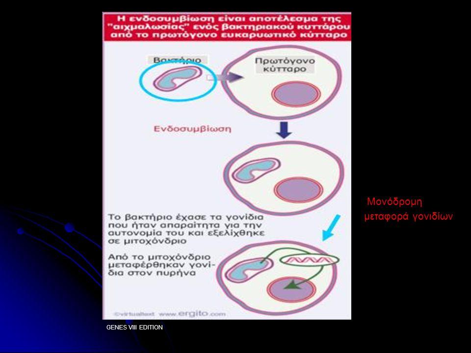 Μιτοχονδριακό DNA (mtDNA) εξελικτικό εργαλείο Μέγεθος Μέγεθος Μέγεθος Υψηλός αριθμός αντιγράφων /κύτταρο Υψηλός αριθμός αντιγράφων /κύτταρο Διαφορές στον γενετικό κώδικα μεταξύ οργανισμών Διαφορές στον γενετικό κώδικα μεταξύ οργανισμώνγενετικό κώδικα γενετικό κώδικα Μητρική κληρονόμηση Μητρική κληρονόμηση ( - μύδι Mytilus) Μητρική κληρονόμηση Μητρική κληρονόμηση Όχι ανασυνδυασμοί, Όχι ανασυνδυασμοί ( - μύδι Mytilus, καρκινοειδές Gammarus fossarum, γένος αμφιβίου Rana, γένος θηλαστικού Apodemus, yeast) Υψηλός αριθμός μεταλλαγών Υψηλός αριθμός μεταλλαγών (υποκαταστάσεις)