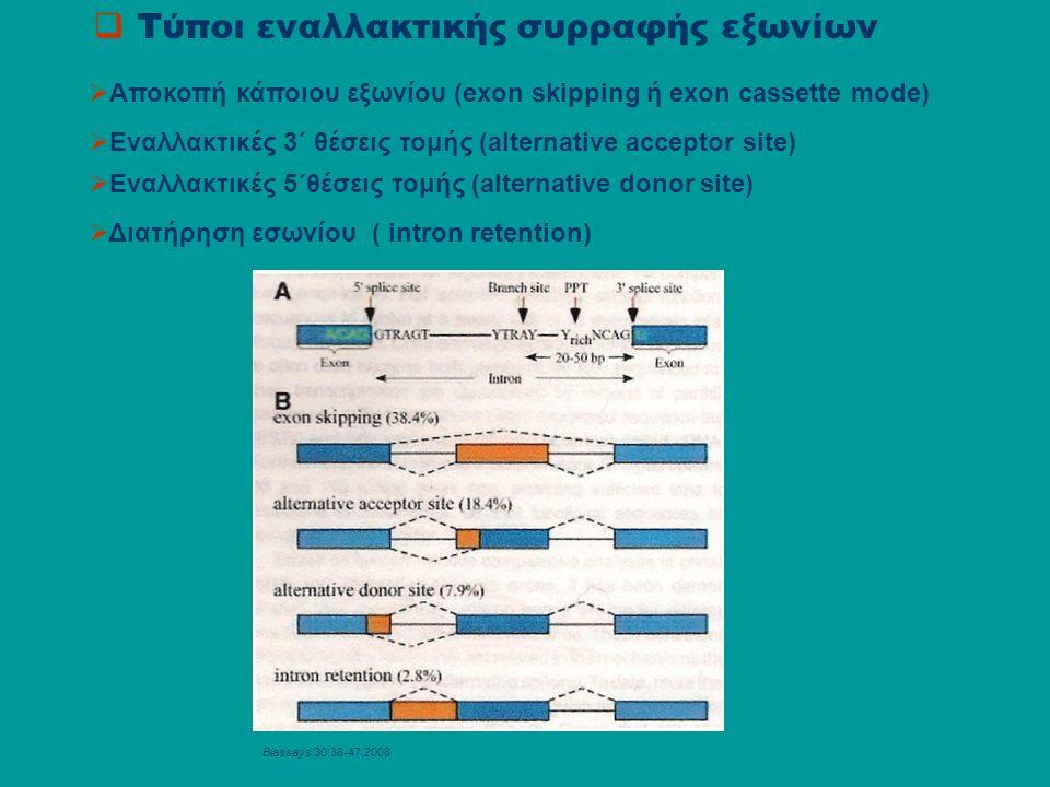  Τύποι εναλλακτικής συρραφής εξωνίων  Αποκοπή κάποιου εξωνίου (exon skipping ή exon cassette mode)  Εναλλακτικές 3΄ θέσεις τομής (alternative acceptor site)  Eναλλακτικές 5΄θέσεις τομής (alternative donor site)  Διατήρηση εσωνίου ( intron retention) Biassays 30:38-47,2008