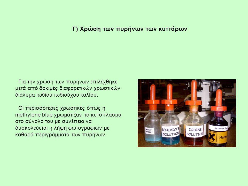 Για την χρώση των πυρήνων επιλέχθηκε μετά από δοκιμές διαφορετικών χρωστικών διάλυμα ιωδίου-ιωδιούχου καλίου. Οι περισσότερες χρωστικές όπως η methyle