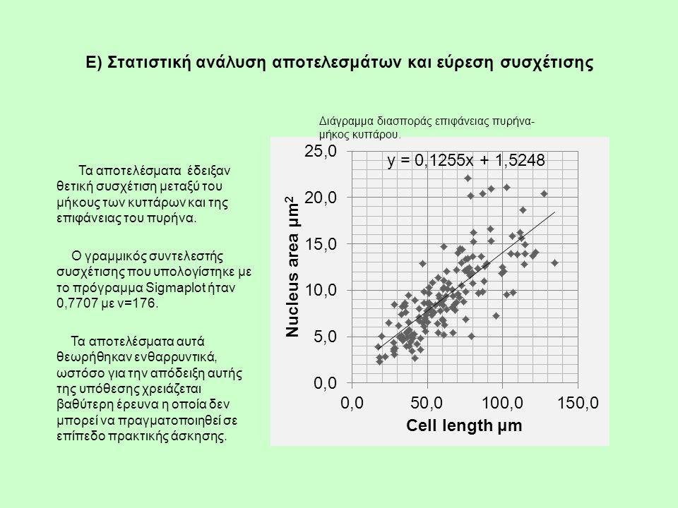 E) Στατιστική ανάλυση αποτελεσμάτων και εύρεση συσχέτισης Τα αποτελέσματα έδειξαν θετική συσχέτιση μεταξύ του μήκους των κυττάρων και της επιφάνειας τ