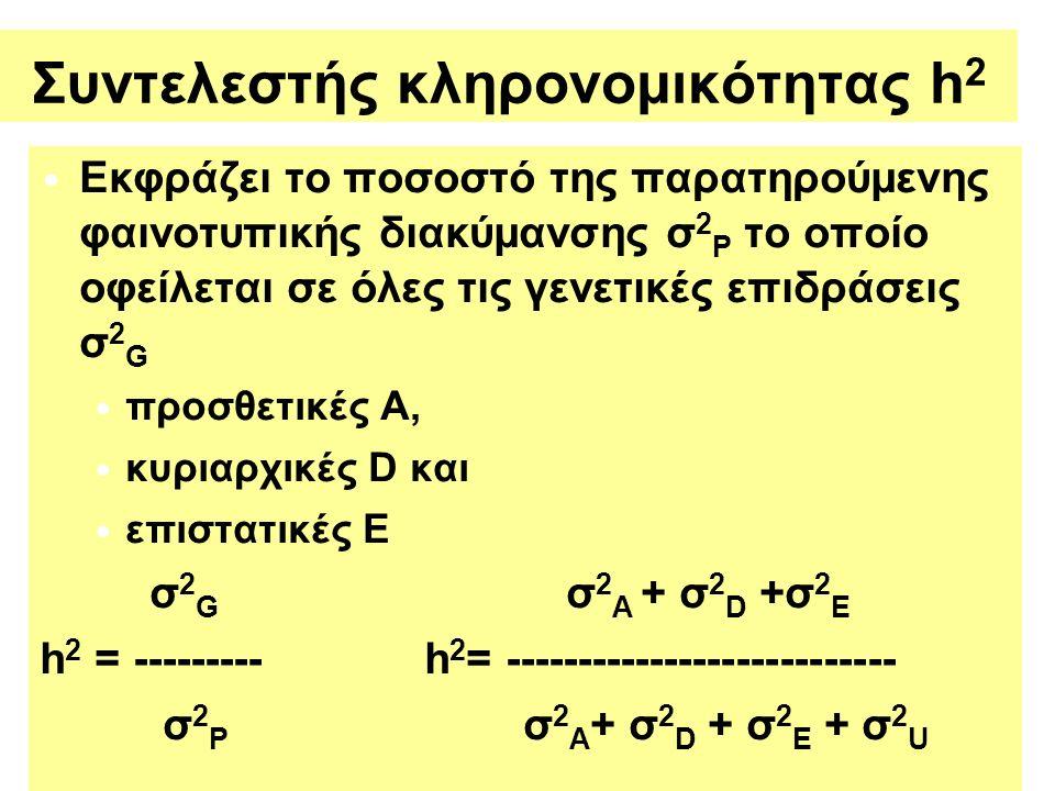 Συντελεστής κληρονομικότητας h 2 Εκφράζει το ποσοστό της παρατηρούμενης φαινοτυπικής διακύμανσης σ 2 P το οποίο oφείλεται σε όλες τις γενετικές επιδράσεις σ 2 G προσθετικές Α, κυριαρχικές D και επιστατικές E σ 2 G σ 2 A + σ 2 D +σ 2 E h 2 = --------- h 2 = --------------------------- σ 2 P σ 2 A + σ 2 D + σ 2 E + σ 2 U