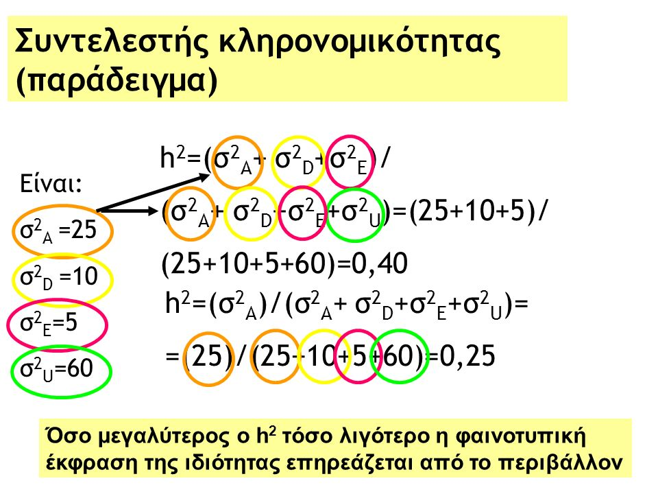 Συντελεστής κληρονομικότητας (παράδειγμα) Είναι: σ 2 Α =25 σ 2 D =10 σ 2 E =5 σ 2 U =60 h 2 =(σ 2 Α + σ 2 D +σ 2 E )/ (σ 2 Α + σ 2 D +σ 2 E +σ 2 U )=(25+10+5)/ (25+10+5+60)=0,40 h 2 =(σ 2 Α )/(σ 2 Α + σ 2 D +σ 2 E +σ 2 U )= =(25)/(25+10+5+60)=0,25 Όσο μεγαλύτερος ο h 2 τόσο λιγότερο η φαινοτυπική έκφραση της ιδιότητας επηρεάζεται από το περιβάλλον
