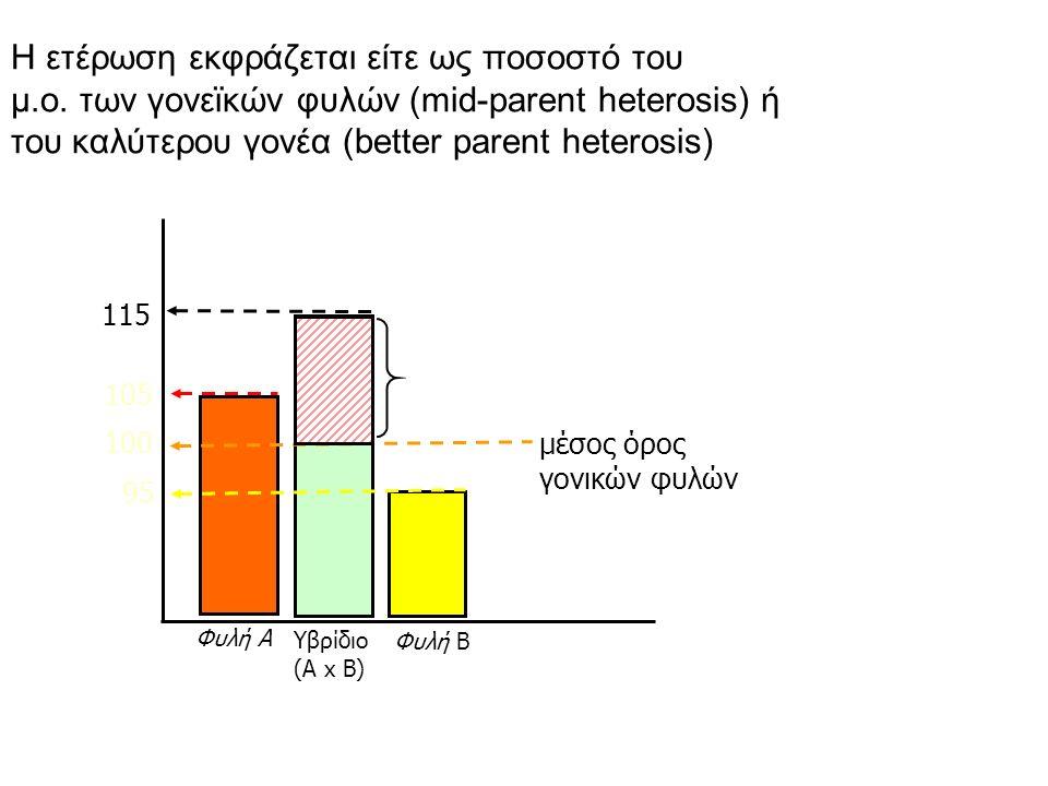 Φυλή Α Φυλή Β 105 95 100 μέσος όρος γονικών φυλών 115 Ετέρωση = 15% Υβρίδιο (Α x Β) H ετέρωση εκφράζεται είτε ως ποσοστό του μ.ο.