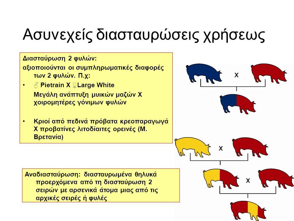 Ασυνεχείς διασταυρώσεις χρήσεως Διασταύρωση 2 φυλών: αξιοποιούνται οι συμπληρωματικές διαφορές των 2 φυλών.