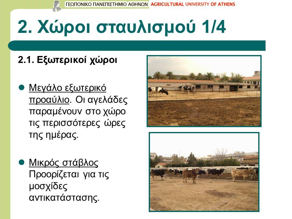 2. Χώροι σταυλισμού 1/4 2.1. Εξωτερικοί χώροι Μεγάλο εξωτερικό προαύλιο. Οι αγελάδες παραμένουν στο χώρο τις περισσότερες ώρες της ημέρας. Μικρός στάβ