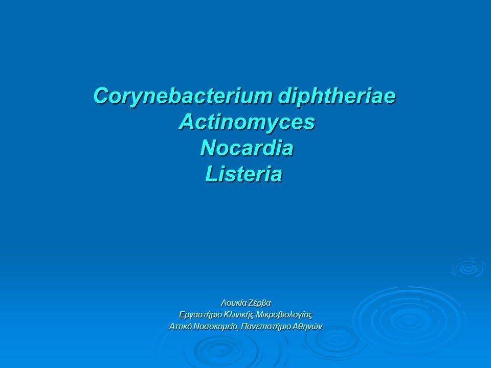 Corynebacterium diphtheriae Actinomyces Νocardia Listeria Corynebacterium diphtheriae Actinomyces Νocardia Listeria Λουκία Ζέρβα Εργαστήριο Κλινικής Μικροβιολογίας Αττικό Νοσοκομείο, Πανεπιστήμιο Αθηνών