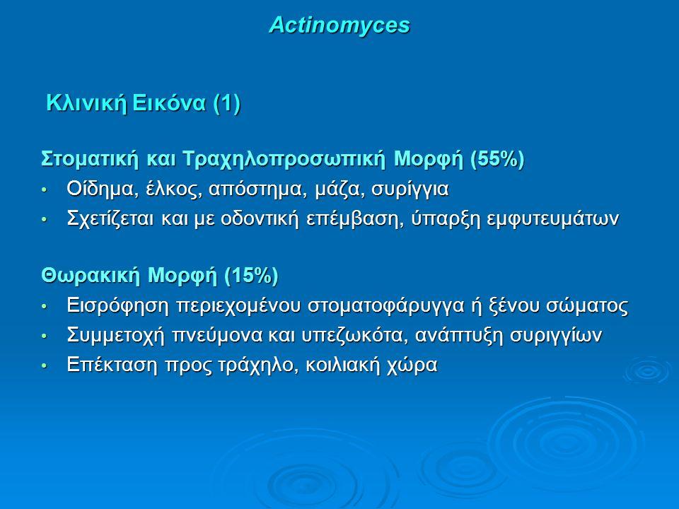 Actinomyces Κλινική Εικόνα (1) Κλινική Εικόνα (1) Στοματική και Τραχηλοπροσωπική Μορφή (55%) Οίδημα, έλκος, απόστημα, μάζα, συρίγγια Οίδημα, έλκος, απόστημα, μάζα, συρίγγια Σχετίζεται και με οδοντική επέμβαση, ύπαρξη εμφυτευμάτων Σχετίζεται και με οδοντική επέμβαση, ύπαρξη εμφυτευμάτων Θωρακική Μορφή (15%) Εισρόφηση περιεχομένου στοματοφάρυγγα ή ξένου σώματος Εισρόφηση περιεχομένου στοματοφάρυγγα ή ξένου σώματος Συμμετοχή πνεύμονα και υπεζωκότα, ανάπτυξη συριγγίων Συμμετοχή πνεύμονα και υπεζωκότα, ανάπτυξη συριγγίων Επέκταση προς τράχηλο, κοιλιακή χώρα Επέκταση προς τράχηλο, κοιλιακή χώρα