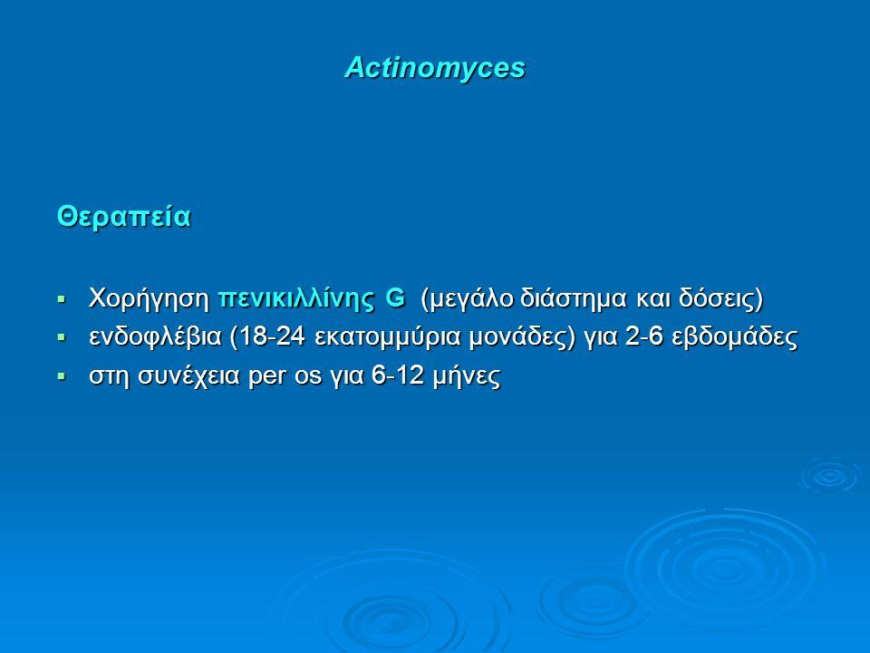 Actinomyces Θεραπεία  Χορήγηση πενικιλλίνης G (μεγάλο διάστημα και δόσεις)  ενδοφλέβια (18-24 εκατομμύρια μονάδες) για 2-6 εβδομάδες  στη συνέχεια per os για 6-12 μήνες