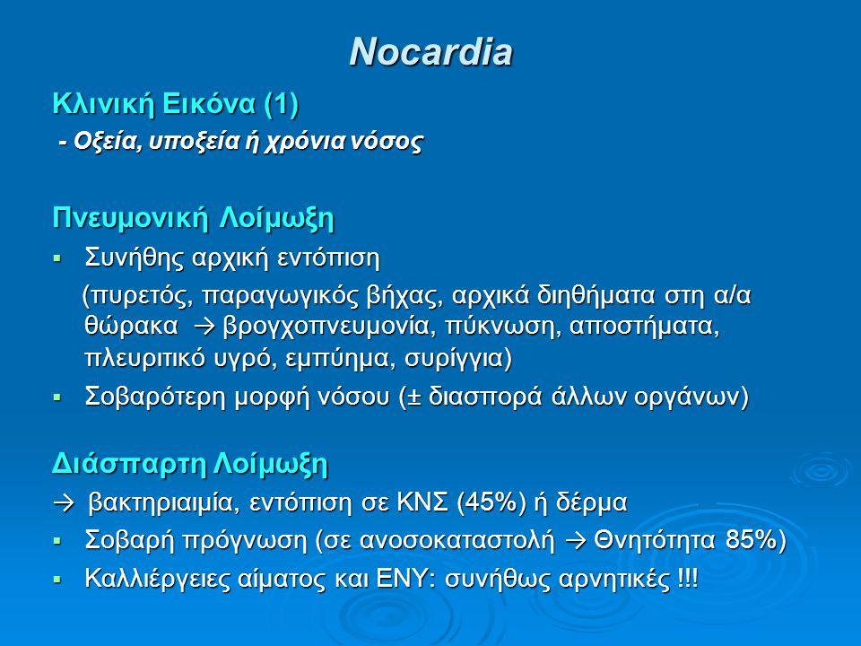 Νocardia Κλινική Εικόνα (1) - Οξεία, υποξεία ή χρόνια νόσος - Οξεία, υποξεία ή χρόνια νόσος Πνευμονική Λοίμωξη  Συνήθης αρχική εντόπιση (πυρετός, παραγωγικός βήχας, αρχικά διηθήματα στη α/α θώρακα → βρογχοπνευμονία, πύκνωση, αποστήματα, πλευριτικό υγρό, εμπύημα, συρίγγια) (πυρετός, παραγωγικός βήχας, αρχικά διηθήματα στη α/α θώρακα → βρογχοπνευμονία, πύκνωση, αποστήματα, πλευριτικό υγρό, εμπύημα, συρίγγια)  Σοβαρότερη μορφή νόσου (± διασπορά άλλων οργάνων) Διάσπαρτη Λοίμωξη → βακτηριαιμία, εντόπιση σε ΚΝΣ (45%) ή δέρμα  Σοβαρή πρόγνωση (σε ανοσοκαταστολή → Θνητότητα 85%)  Καλλιέργειες αίματος και ΕΝΥ: συνήθως αρνητικές !!!