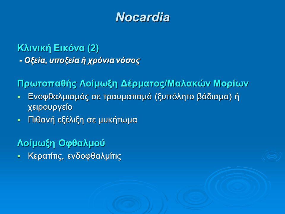 Νocardia Κλινική Εικόνα (2) - Οξεία, υποξεία ή χρόνια νόσος - Οξεία, υποξεία ή χρόνια νόσος Πρωτοπαθής Λοίμωξη Δέρματος/Μαλακών Μορίων  Ενοφθαλμισμός σε τραυματισμό (ξυπόλητο βάδισμα) ή χειρουργείο  Πιθανή εξέλιξη σε μυκήτωμα Λοίμωξη Οφθαλμού  Κερατίτις, ενδοφθαλμίτις