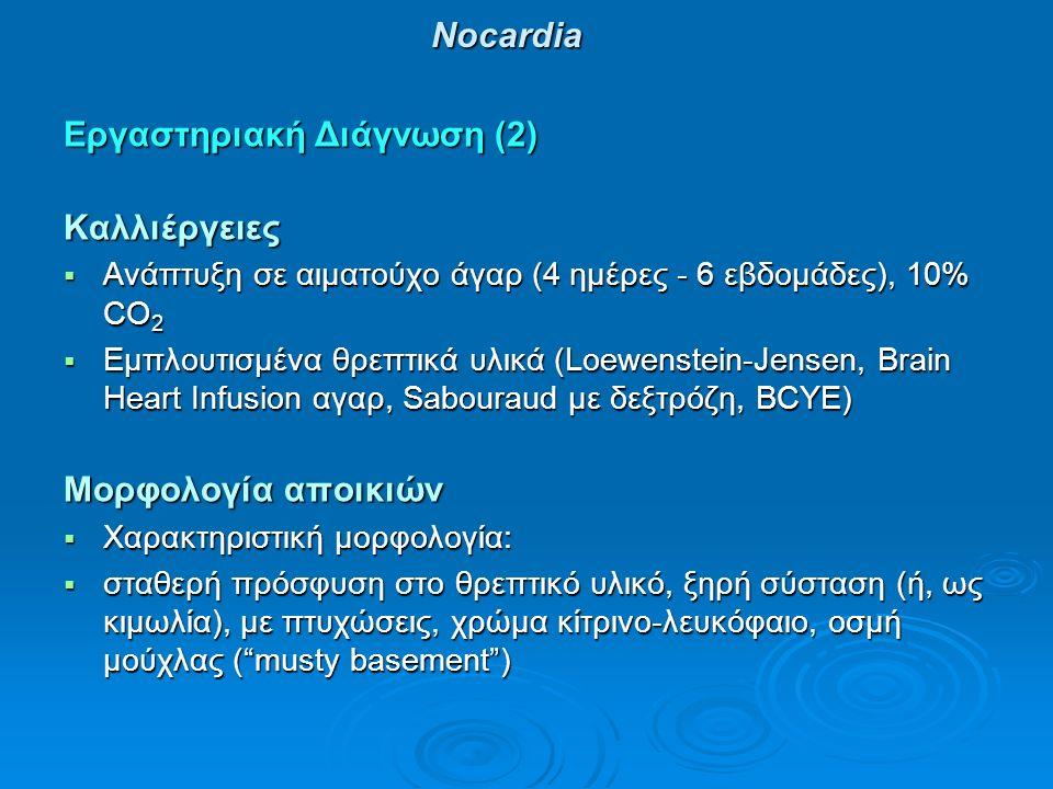 Νocardia Εργαστηριακή Διάγνωση (2) Καλλιέργειες  Ανάπτυξη σε αιματούχο άγαρ (4 ημέρες - 6 εβδομάδες), 10% CO 2  Εμπλουτισμένα θρεπτικά υλικά (Loewenstein-Jensen, Brain Heart Infusion αγαρ, Sabouraud με δεξτρόζη, ΒCYE) Μορφολογία αποικιών  Χαρακτηριστική μορφολογία:  σταθερή πρόσφυση στο θρεπτικό υλικό, ξηρή σύσταση (ή, ως κιμωλία), με πτυχώσεις, χρώμα κίτρινο-λευκόφαιο, οσμή μούχλας ( musty basement )