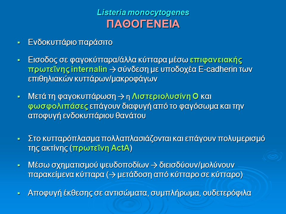 Listeria monocytogenes ΠΑΘΟΓΕΝΕΙΑ  Ενδοκυττάριο παράσιτο  Εισοδος σε φαγοκύτταρα/άλλα κύτταρα μέσω επιφανειακής πρωτε ἵ νης internalin → σύνδεση με υποδοχέα E-cadherin των επιθηλιακών κυττάρων/μακροφάγων  Μετά τη φαγοκυττάρωση → η Λιστεριολυσίνη Ο και φωσφολιπάσες επάγουν διαφυγή από το φαγόσωμα και την αποφυγή ενδοκυττάριου θανάτου  Στο κυτταρόπλασμα πολλαπλασιάζονται και επάγουν πολυμερισμό της ακτίνης (πρωτε ἵ νη ActA)  Μέσω σχηματισμoύ ψευδοποδίων → διεισδύουν/μολύνουν παρακείμενα κύτταρα ( → μετάδοση από κύτταρο σε κύτταρο)  Αποφυγή έκθεσης σε αντισώματα, συμπλήρωμα, ουδετερόφιλα