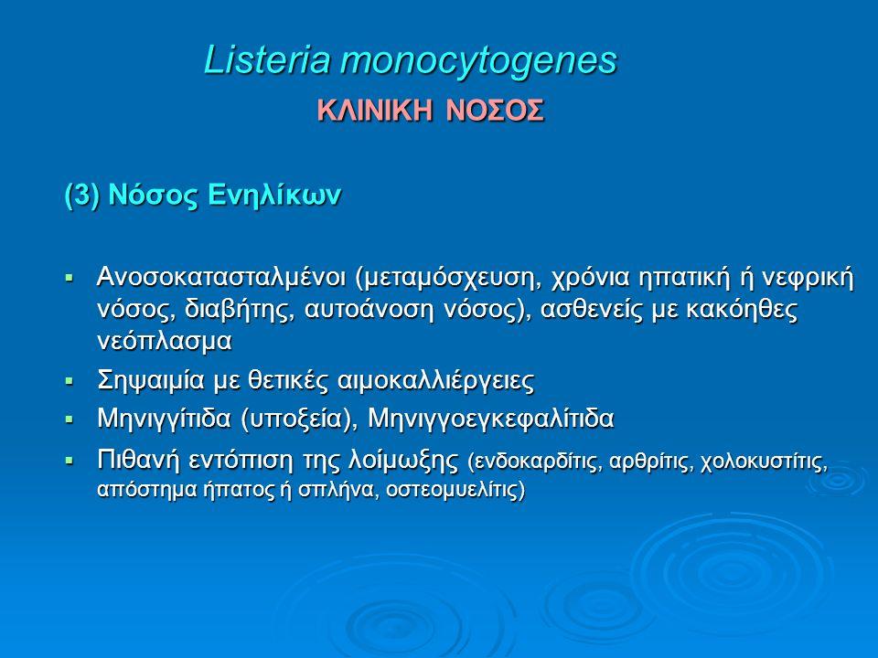 Listeria monocytogenes ΚΛΙΝΙΚΗ ΝΟΣΟΣ (3) Νόσος Ενηλίκων  Ανοσοκατασταλμένοι (μεταμόσχευση, χρόνια ηπατική ή νεφρική νόσος, διαβήτης, αυτοάνοση νόσος), ασθενείς με κακόηθες νεόπλασμα  Σηψαιμία με θετικές αιμοκαλλιέργειες  Μηνιγγίτιδα (υποξεία), Μηνιγγοεγκεφαλίτιδα  Πιθανή εντόπιση της λοίμωξης (ενδοκαρδίτις, αρθρίτις, χολοκυστίτις, απόστημα ήπατος ή σπλήνα, οστεομυελίτις)