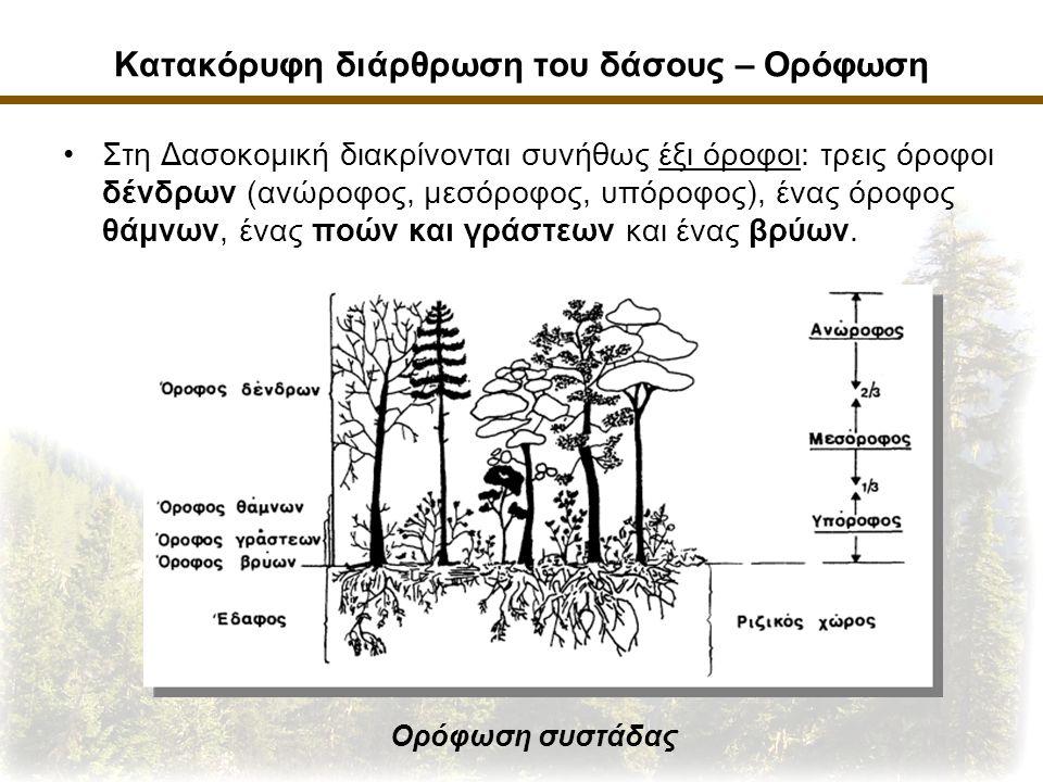 Κατακόρυφη διάρθρωση του δάσους – Ορόφωση Στη Δασοκομική διακρίνονται συνήθως έξι όροφοι: τρεις όροφοι δένδρων (ανώροφος, μεσόροφος, υπόροφος), ένας όροφος θάμνων, ένας ποών και γράστεων και ένας βρύων.