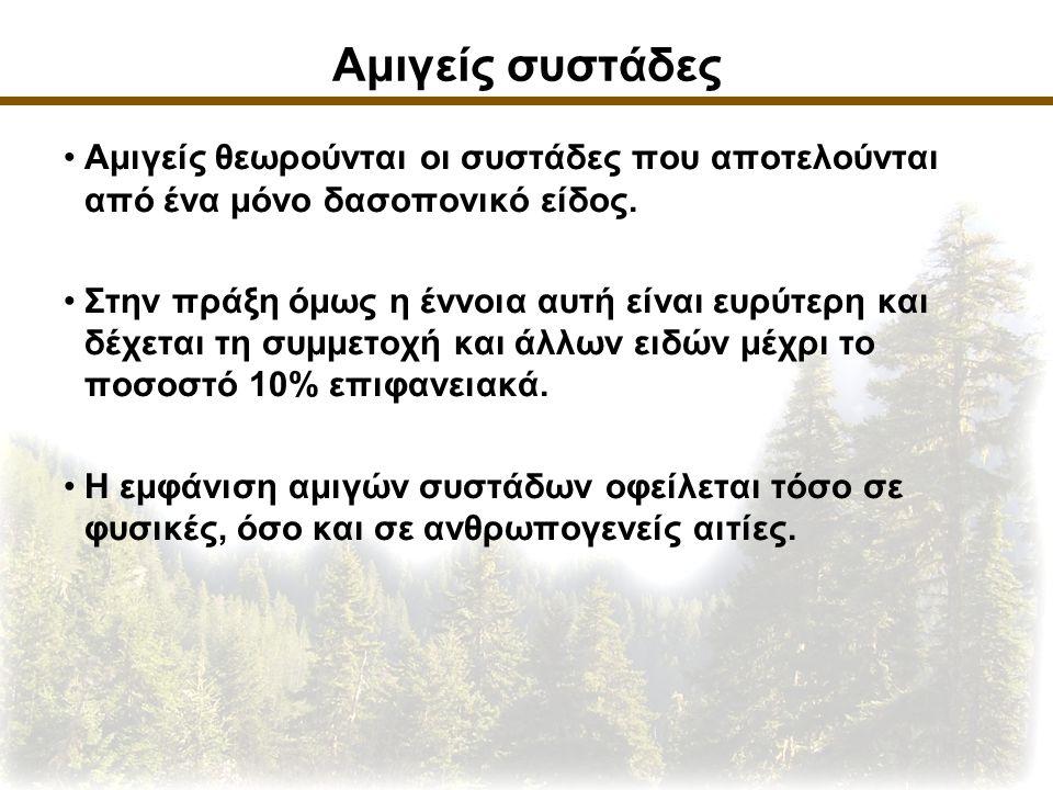 Αμιγείς συστάδες Αμιγείς θεωρούνται οι συστάδες που αποτελούνται από ένα μόνο δασοπονικό είδος.