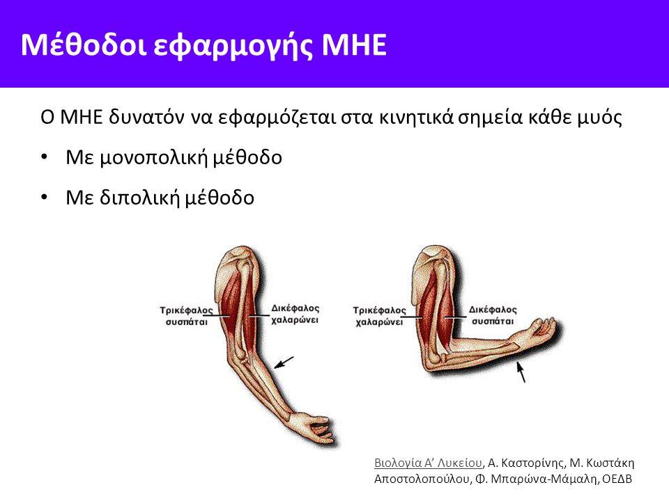 Μέθοδοι εφαρμογής ΜΗΕ O MHE δυνατόν να εφαρμόζεται στα κινητικά σημεία κάθε μυός Με μονοπολική μέθοδο Με διπολική μέθοδο Βιολογία Α' ΛυκείουΒιολογία Α' Λυκείου, Α.