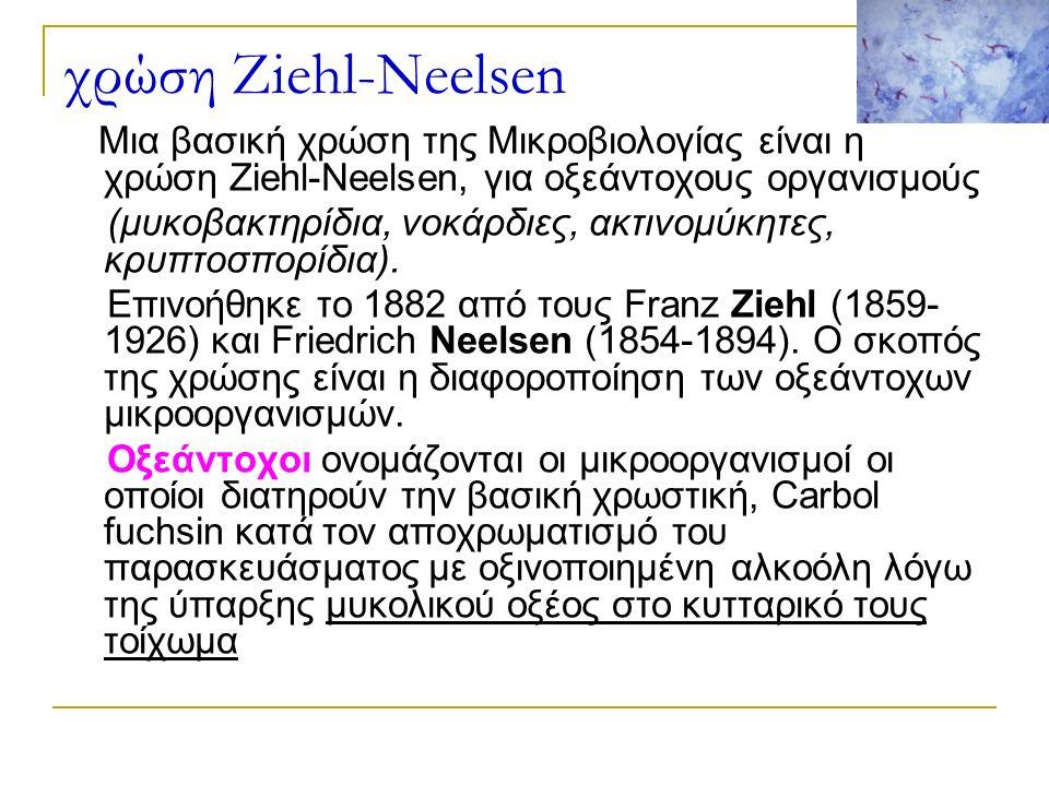 χρώση Ziehl-Neelsen Μια βασική χρώση της Μικροβιολογίας είναι η χρώση Ziehl-Neelsen, για οξεάντοχους οργανισμούς (μυκοβακτηρίδια, νοκάρδιες, ακτινομύκητες, κρυπτοσπορίδια).