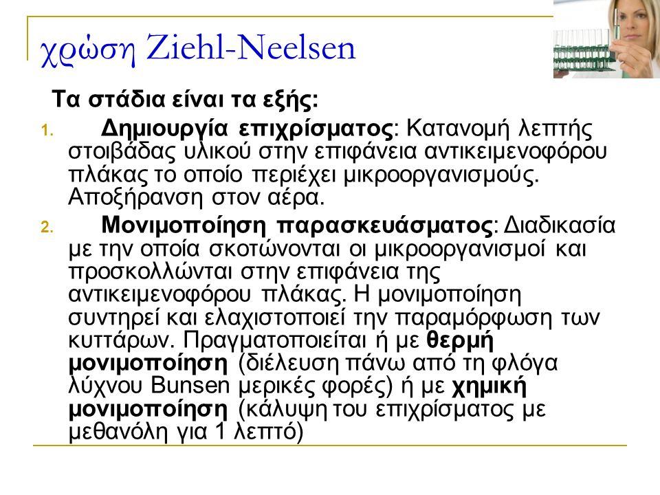 χρώση Ziehl-Neelsen Τα στάδια είναι τα εξής: 1.