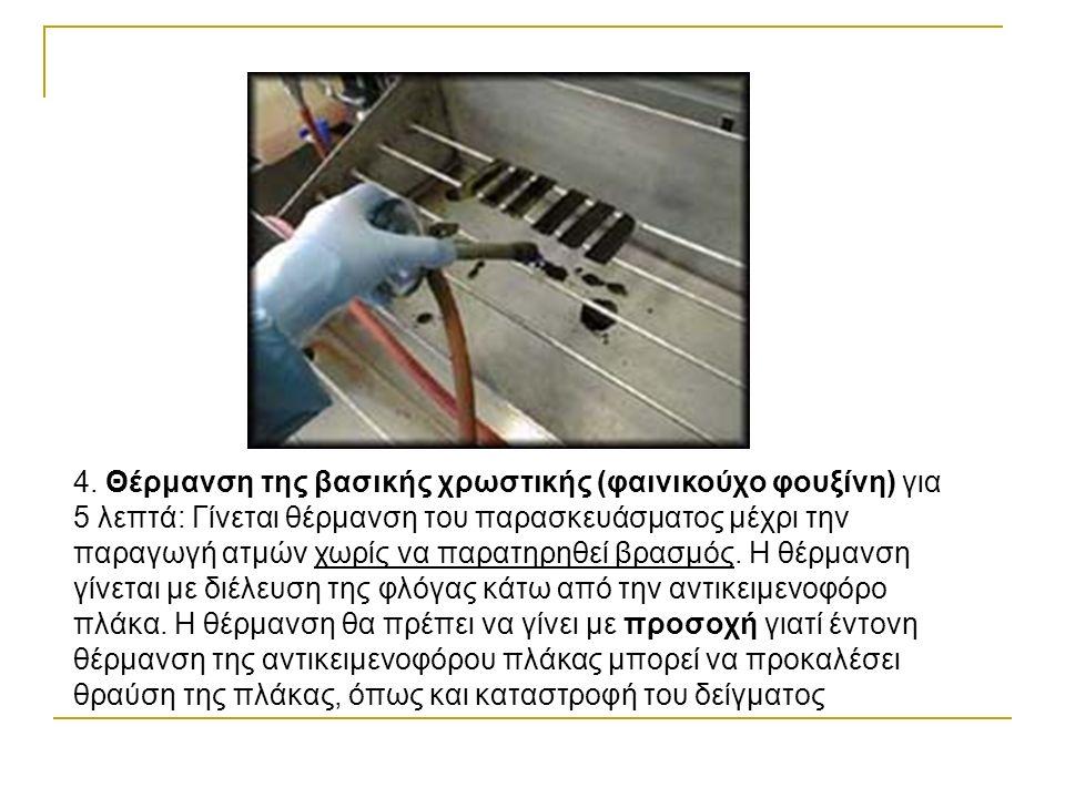 4. Θέρμανση της βασικής χρωστικής (φαινικούχο φουξίνη) για 5 λεπτά: Γίνεται θέρμανση του παρασκευάσματος μέχρι την παραγωγή ατμών χωρίς να παρατηρηθεί