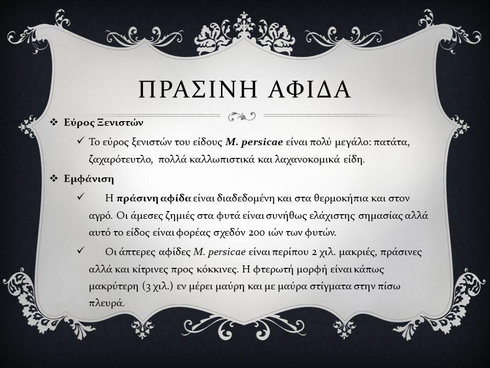 ΠΡΑΣΙΝΗ ΑΦΙΔΑ  Εύρος Ξενιστών Το εύρος ξενιστών του είδους Μ.