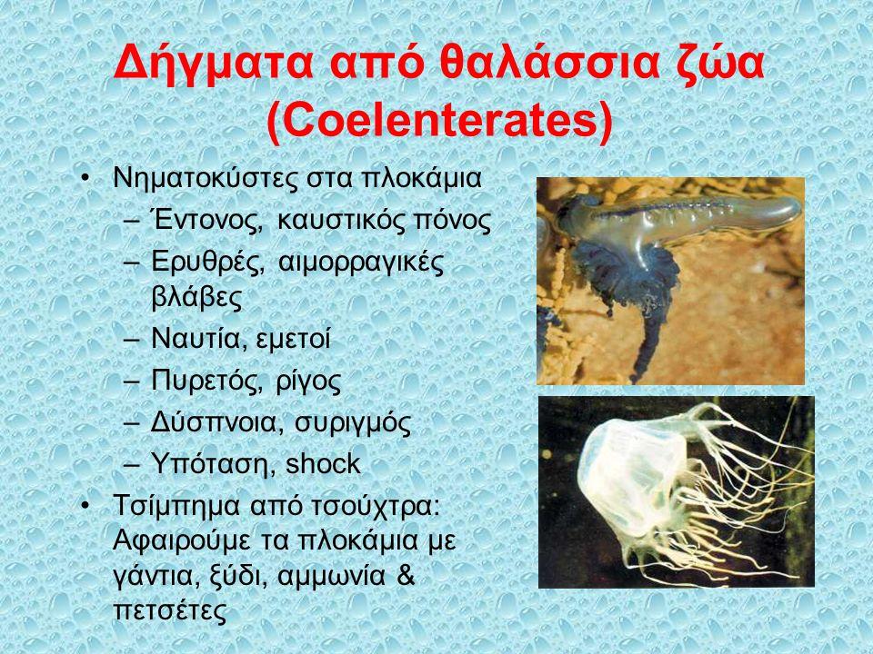 Δήγματα από θαλάσσια ζώα (Coelenterates) Νηματοκύστες στα πλοκάμια –Έντονος, καυστικός πόνος –Ερυθρές, αιμορραγικές βλάβες –Ναυτία, εμετοί –Πυρετός, ρίγος –Δύσπνοια, συριγμός –Υπόταση, shock Τσίμπημα από τσούχτρα: Αφαιρούμε τα πλοκάμια με γάντια, ξύδι, αμμωνία & πετσέτες