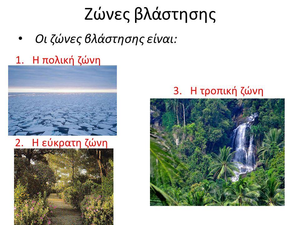 Ζώνες βλάστησης Οι ζώνες βλάστησης είναι: 1.Η πολική ζώνη 2.Η εύκρατη ζώνη 3.Η τροπική ζώνη