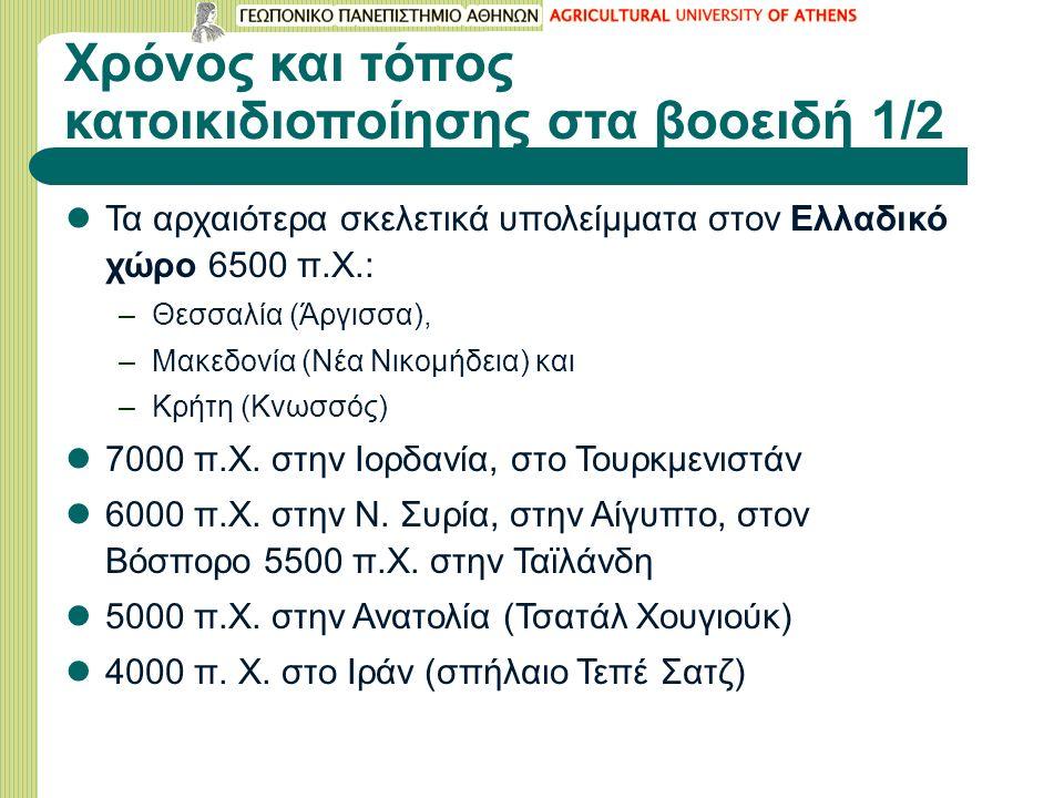 Χρόνος και τόπος κατοικιδιοποίησης στα βοοειδή 1/2 Τα αρχαιότερα σκελετικά υπολείμματα στον Ελλαδικό χώρο 6500 π.Χ.: –Θεσσαλία (Άργισσα), –Μακεδονία (Νέα Νικομήδεια) και –Κρήτη (Κνωσσός) 7000 π.Χ.