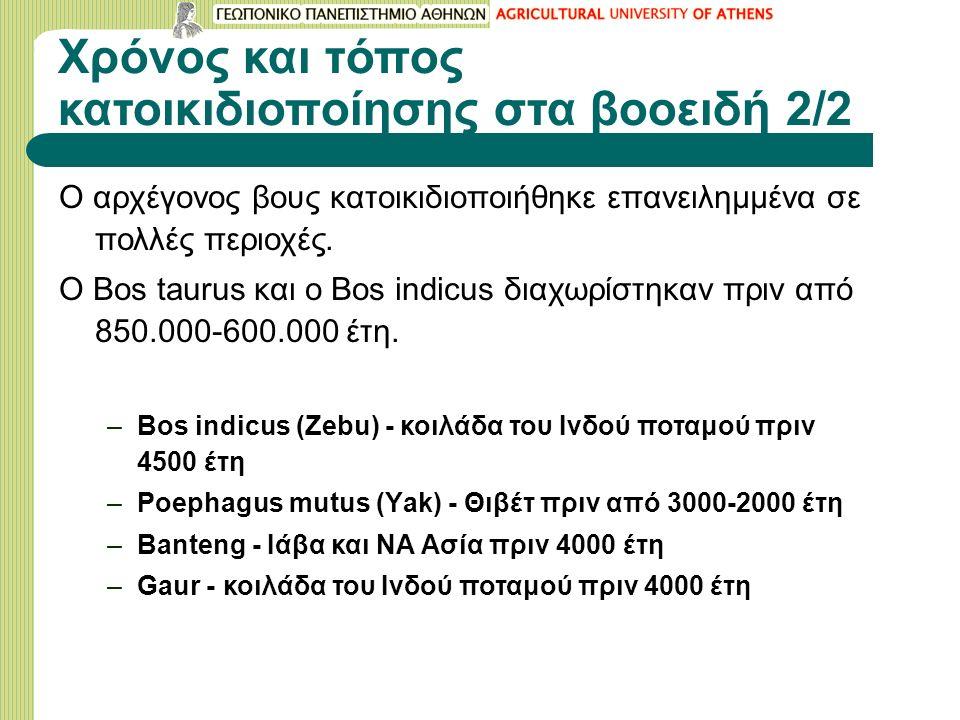 Χρόνος και τόπος κατοικιδιοποίησης στα βοοειδή 2/2 Ο αρχέγονος βους κατοικιδιοποιήθηκε επανειλημμένα σε πολλές περιοχές. Ο Bos taurus και ο Bos indicu