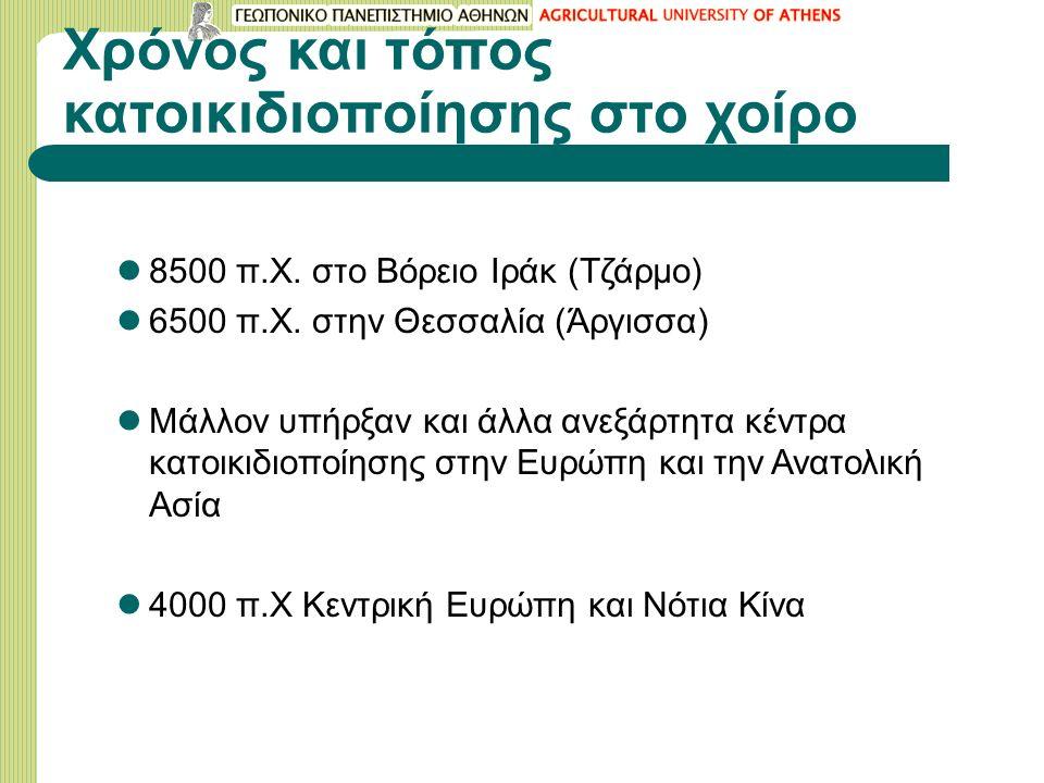 Χρόνος και τόπος κατοικιδιοποίησης στο χοίρο 8500 π.Χ.