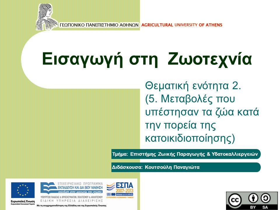 Εισαγωγή στη Ζωοτεχνία Θεματική ενότητα 2. (5. Μεταβολές που υπέστησαν τα ζώα κατά την πορεία της κατοικιδιοποίησης) Τμήμα: Επιστήμης Ζωικής Παραγωγής