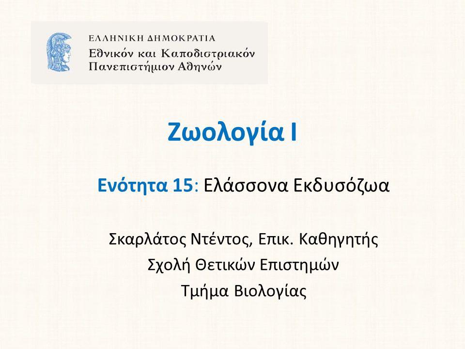 Ζωολογία Ι Ενότητα 15: Ελάσσονα Εκδυσόζωα Σκαρλάτος Ντέντος, Επικ.