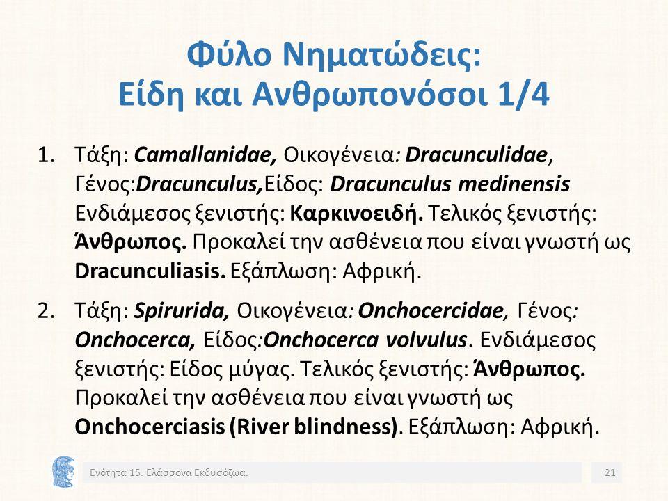 Φύλο Νηματώδεις: Είδη και Ανθρωπονόσοι 1/4 1.Τάξη: Camallanidae, Οικογένεια: Dracunculidae, Γένος:Dracunculus,Eίδος: Dracunculus medinensis Ενδιάμεσος ξενιστής: Καρκινοειδή.