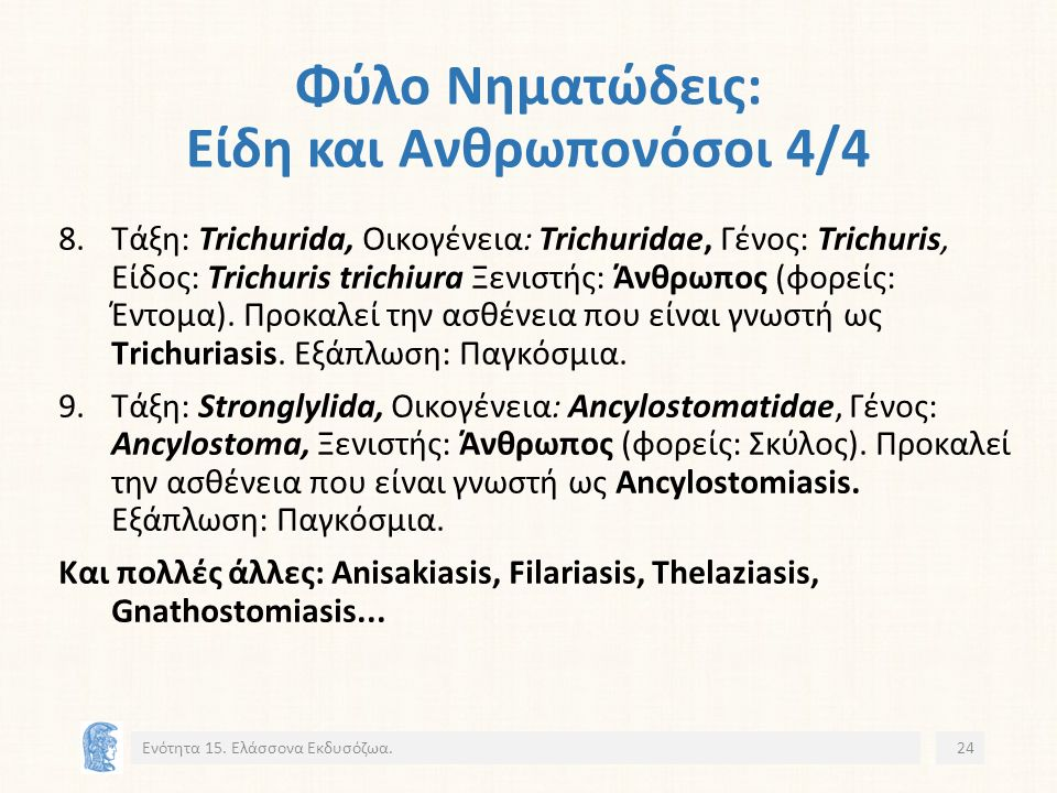 Φύλο Νηματώδεις: Είδη και Ανθρωπονόσοι 4/4 8.Τάξη: Trichurida, Οικογένεια: Trichuridae, Γένος: Trichuris, Είδος: Trichuris trichiura Ξενιστής: Άνθρωπος (φορείς: Έντομα).