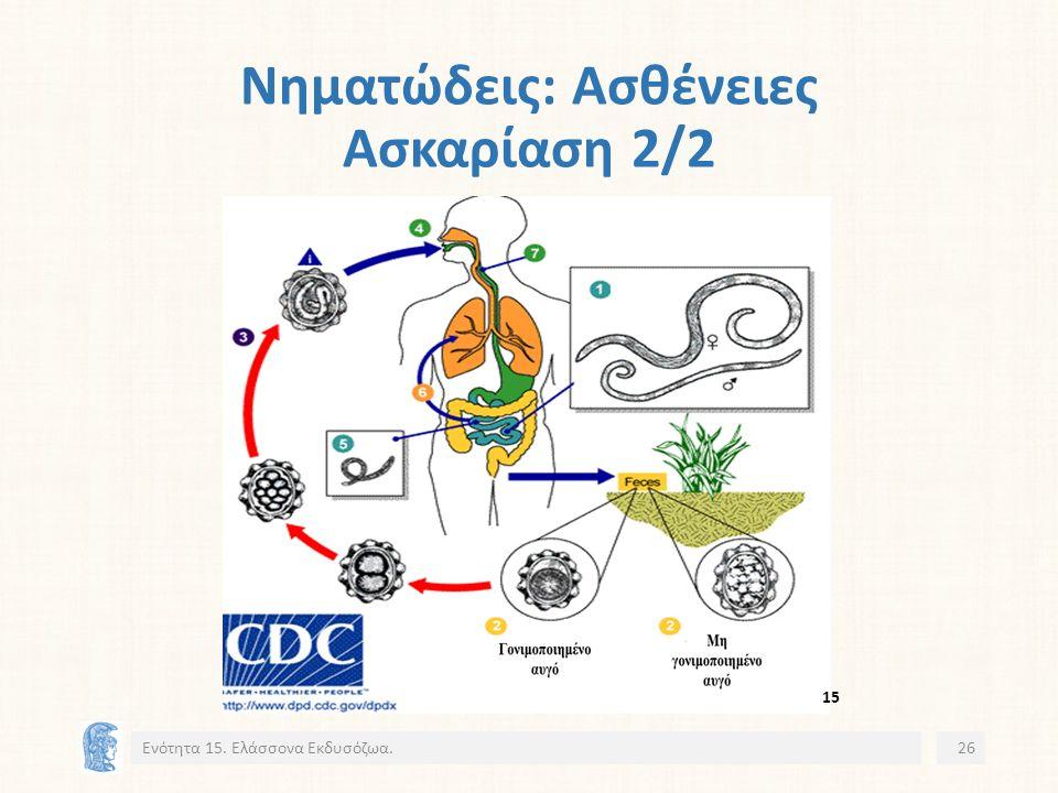 Νηματώδεις: Ασθένειες Ασκαρίαση 2/2 Ενότητα 15. Ελάσσονα Εκδυσόζωα.26 15