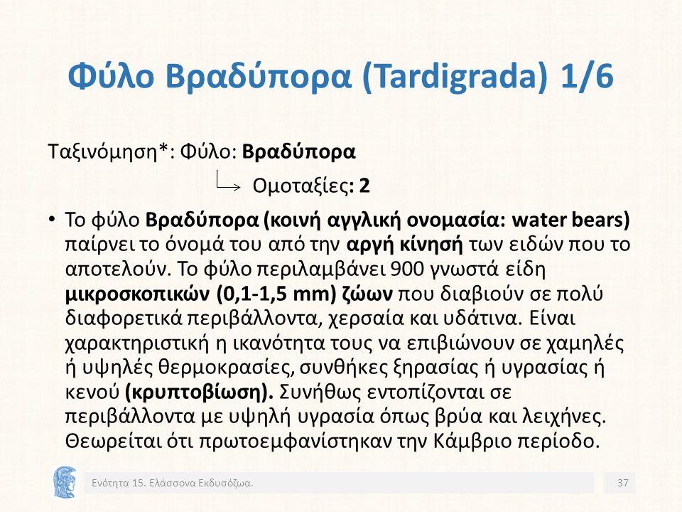 Φύλο Βραδύπορα (Tardigrada) 1/6 Ενότητα 15.