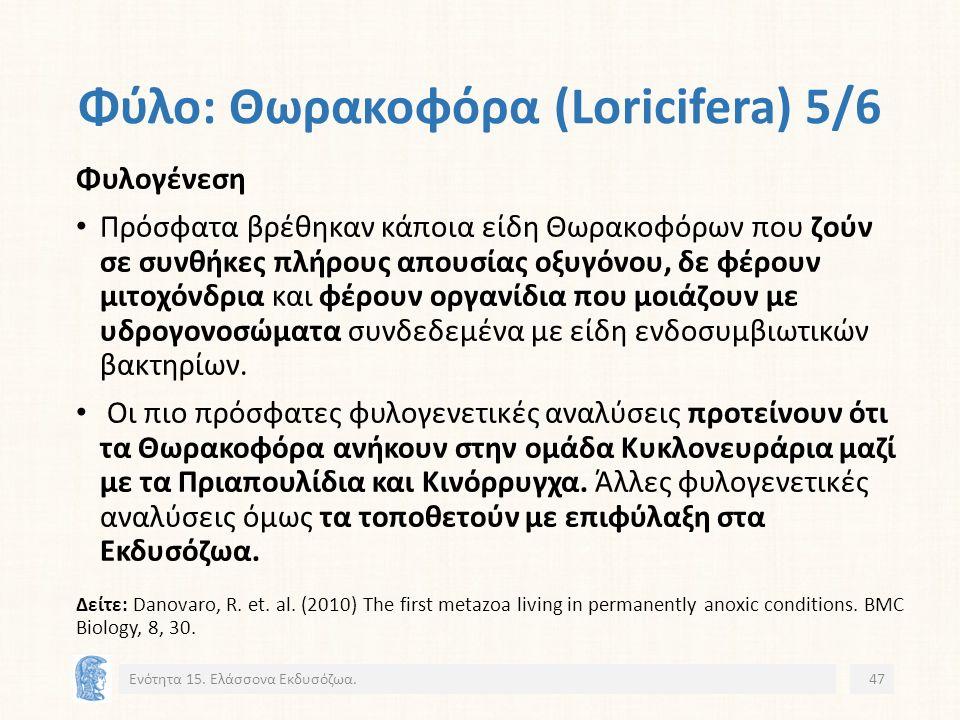 Φύλο: Θωρακοφόρα (Loricifera) 5/6 Ενότητα 15.