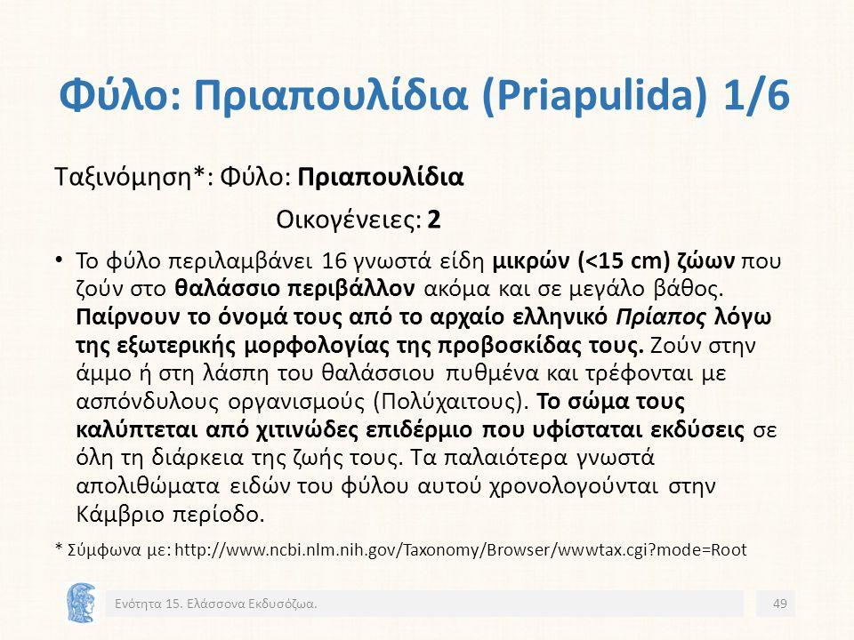 Φύλο: Πριαπουλίδια (Priapulida) 1/6 Ενότητα 15.
