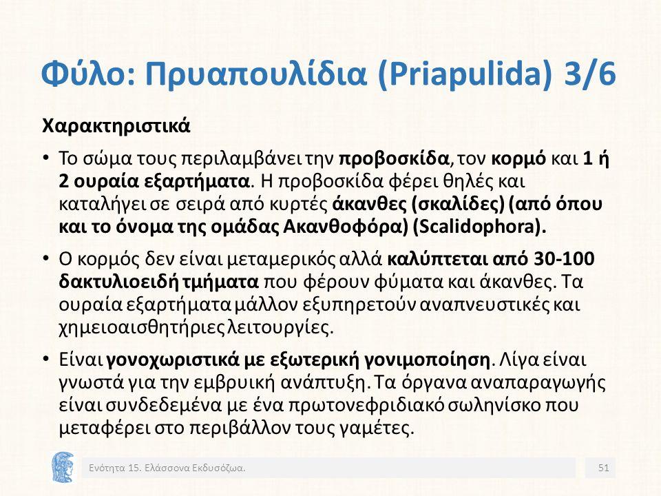 Φύλο: Πρυαπουλίδια (Priapulida) 3/6 Ενότητα 15.