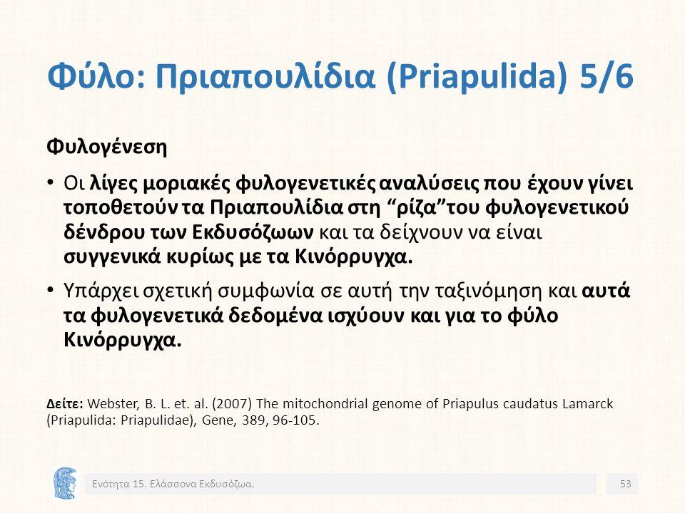 Φύλο: Πριαπουλίδια (Priapulida) 5/6 Ενότητα 15.