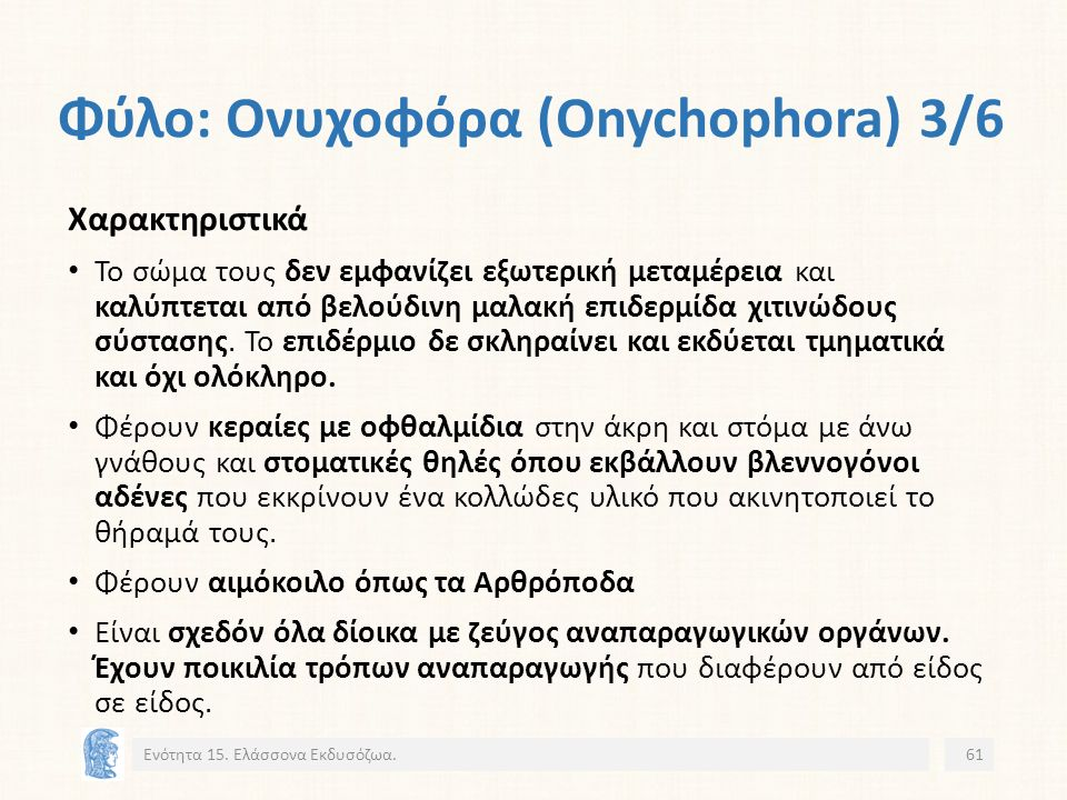 Φύλο: Ονυχοφόρα (Onychophora) 3/6 Ενότητα 15.
