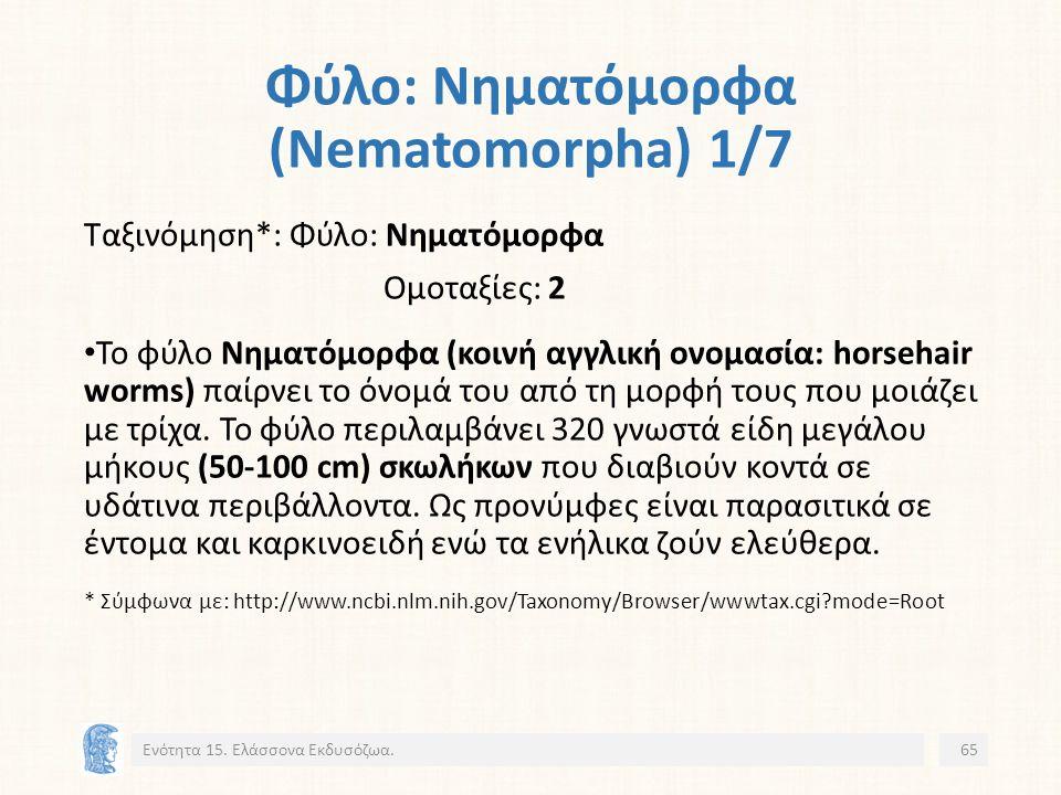 Φύλο: Νηματόμορφα (Nematomorpha) 1/7 Ενότητα 15.