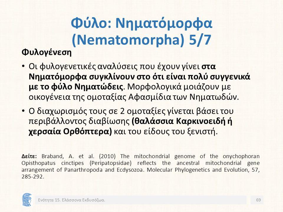 Φύλο: Νηματόμορφα (Nematomorpha) 5/7 Ενότητα 15.