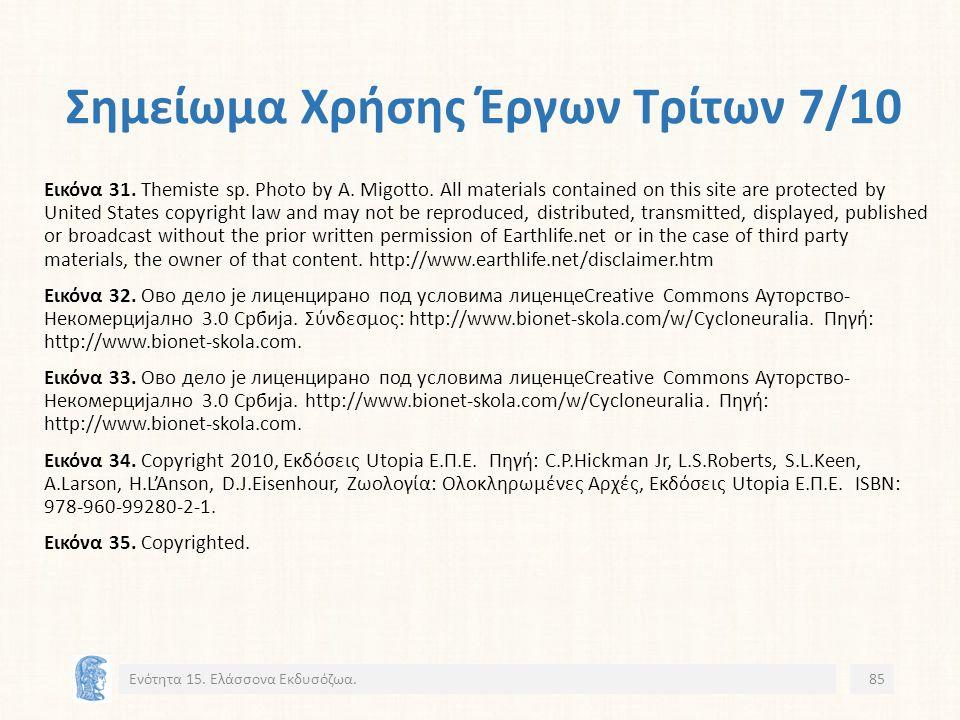 Σημείωμα Χρήσης Έργων Τρίτων 7/10 Εικόνα 31. Themiste sp.