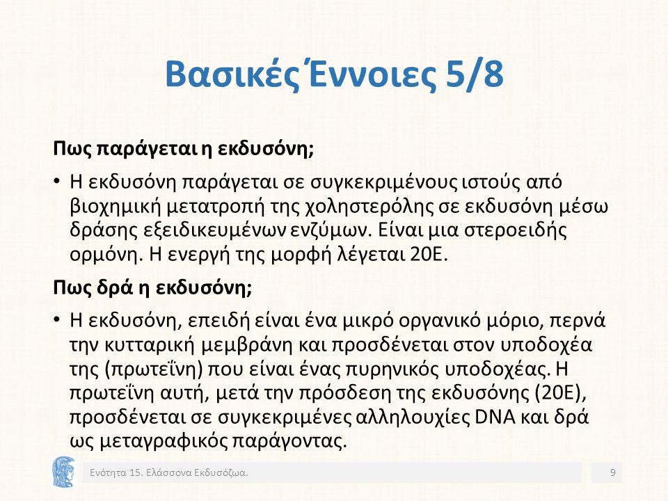 Νηματώδεις: Ασθένειες Οξυουρίαση 2/2 Ενότητα 15. Ελάσσονα Εκδυσόζωα.30 17