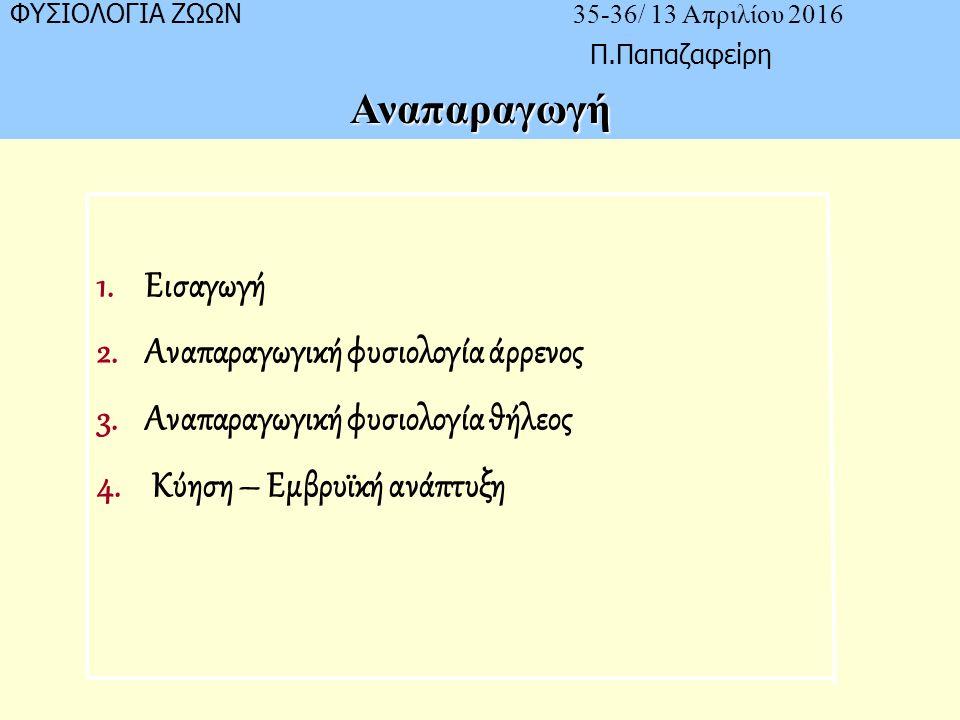 ΦΥΣΙΟΛΟΓΙΑ ΖΩΩΝ 35-36/ 13 Απριλίου 2016 Π.ΠαπαζαφείρηΑναπαραγωγή 1.Εισαγωγή 2.Αναπαραγωγική φυσιολογία άρρενος 3.Αναπαραγωγική φυσιολογία θήλεος 4.